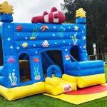 Jumping Castle Hire The Fun Team Reedy Creek